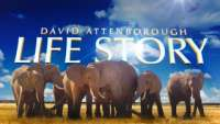 David Attenborough: Life Story