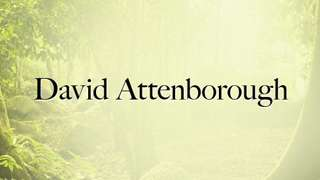 David Attenborough's Planet Earth - Seasonal Forests